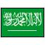 arapça bayrak icon